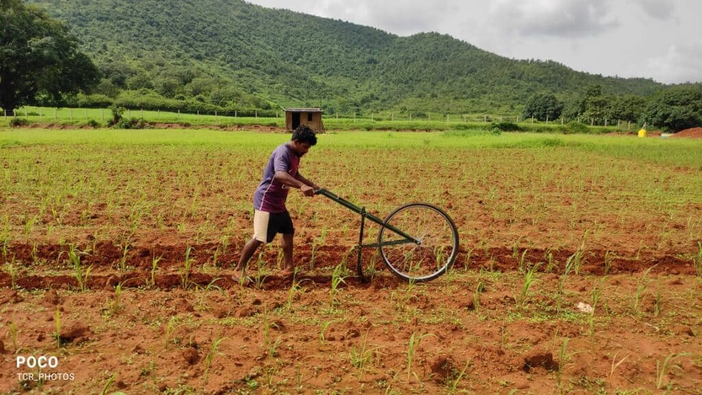 Cycle Weeder in Barnyard Millet Cultivation